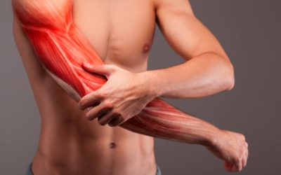 Should You Skip Gym When Sore? DOMS Sweet Spot Explained