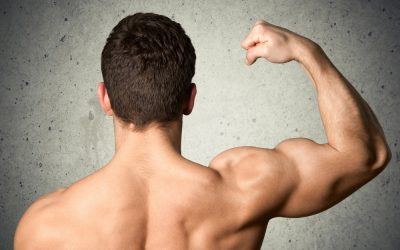 How to Select the Best Exercises for Optimal Muscle Growth